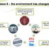 IP Awareness Foundation piracy report