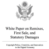 White Paper on Copyright